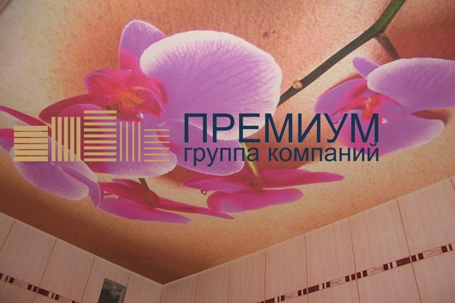 Натяжной интим-потолок S= 8м2